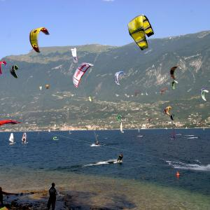 kite_tremosine