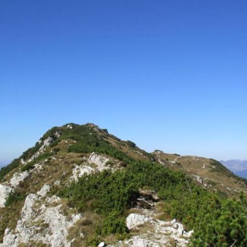 Monte Caplone