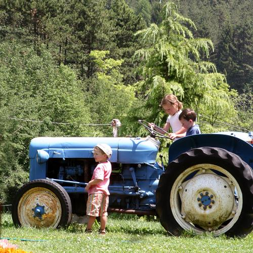 Discovering farming tradition