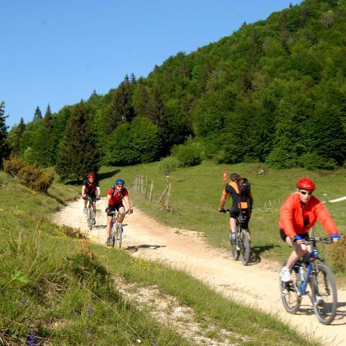 Long bike experience